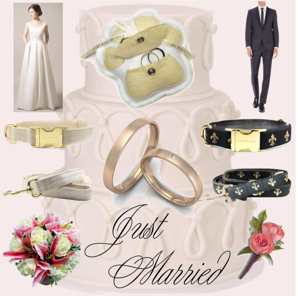 Schönes Hundeleben: Just Married