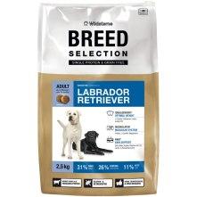Breed Selection für Labrador Retriever. Foto: Wildsterne