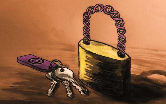 do-patents-restrict-innovation