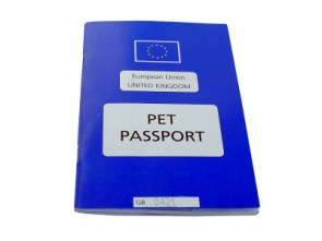 Pet Passport pet,animal,dog,cat,horses,travel,holiday,blue,star,gold, europe,european,united,kingdom,britain,