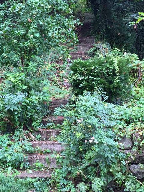 Hidden Stairway in Eureka Springs