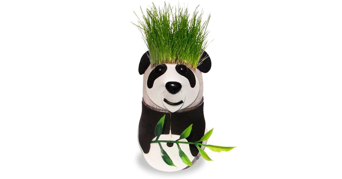 Graskopf Panda  Wohnen Innen  online bei ISDA kaufen