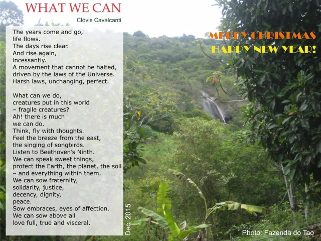 What We Can
