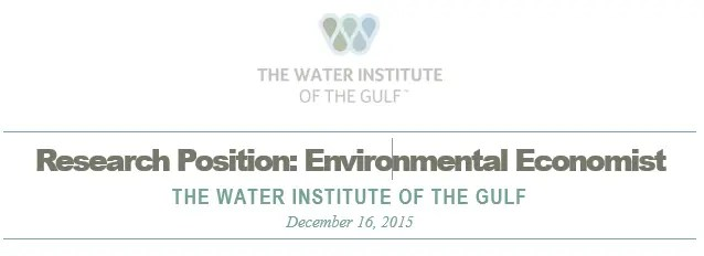 The Water Institute