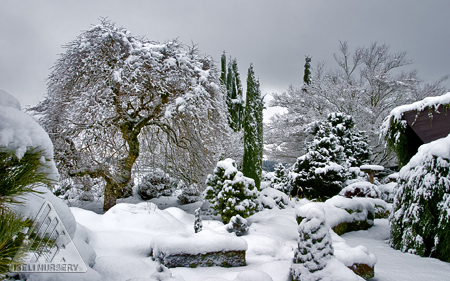 A beautiful blanket of snow