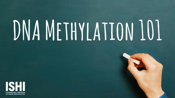 Dna methylation 101 ishi news dna methylation header malvernweather Choice Image