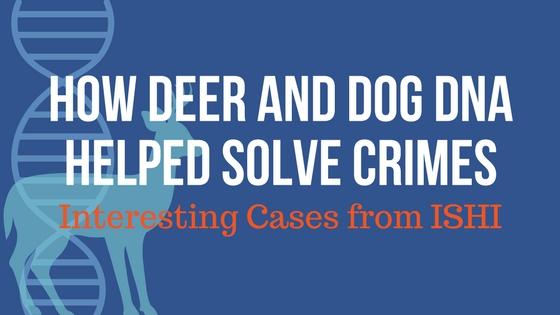 interesting-cases-pt-2