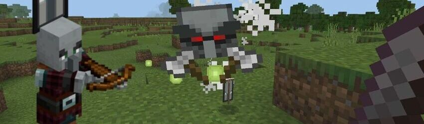 How do you remove Bad Omen in Minecraft?