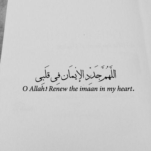 60ded60e60a60d596003cebe60be60f960af6060quotesislamislamicquotesquran Magnificent Quotes Quran