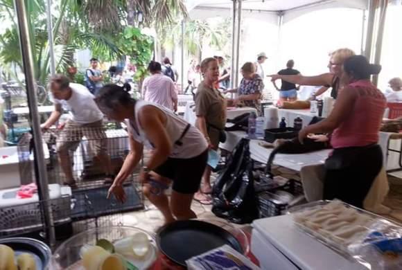 Upcoming Rancho Viejo Spay/Neuter Campaign Dec. 1 – 5