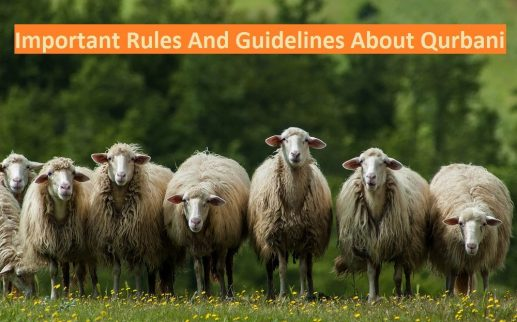 Important-Rules-and-guide-lines-about-Qurbani