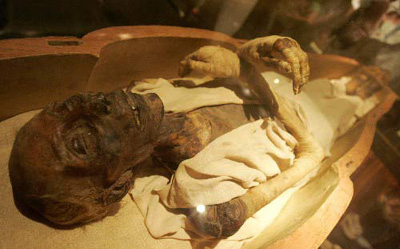 Mummy of Ramesses II showing top view