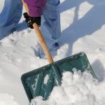 preparing_winter_beatty