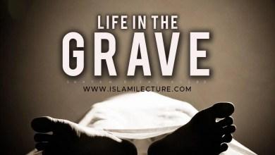 Photo of Life In The Grave – Bilal Assad