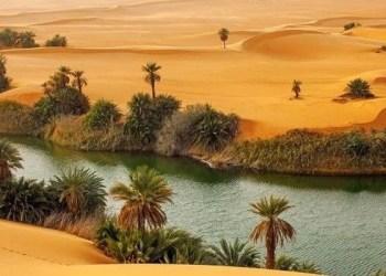 Dahulu, Jazirah Arab Padang Rumput, Ilmuwan Buktikan Kebenaran Rasulullah 1
