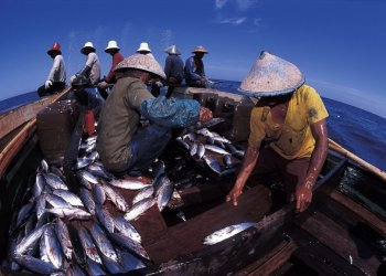 Foto: Goodnewsfromindonesia.id