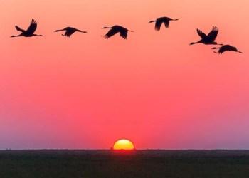Budak Nabi, Fenomena Sunrise dan Sunset, Surat Ad-Duha