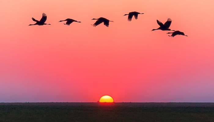Budak Nabi, Fenomena Sunrise dan Sunset
