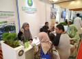 """""""Puldapia Expo"""" di area Muslim Lifestyle Festival. Foto: Istimewa"""