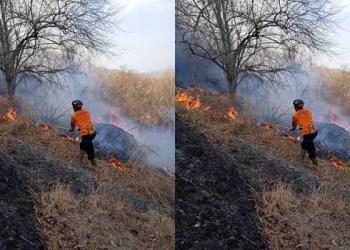 Personel BPBD Berjibaku Padamkan Api yang Membakar Hutan di Gunung Gandul, Giripurwo, Wonogiri. Foto: BPBD Wonogiri