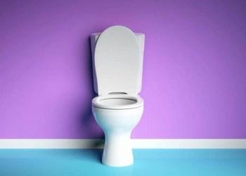 toilet buang air kecil