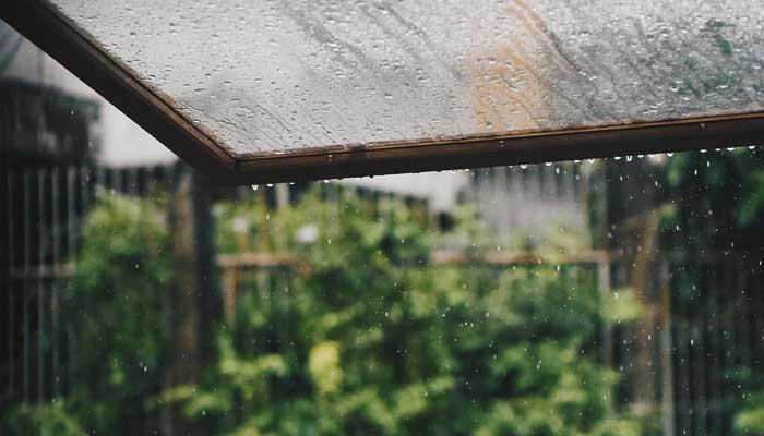 Ilmu Seperti Hujan