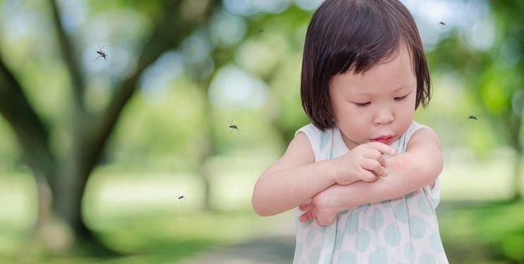 10 Rekomendasi Obat Anti Nyamuk untuk Si Kecil 1