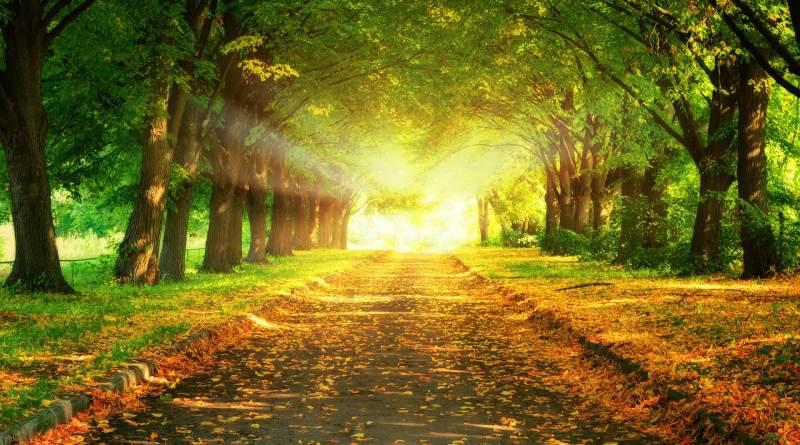 camino del sufismo