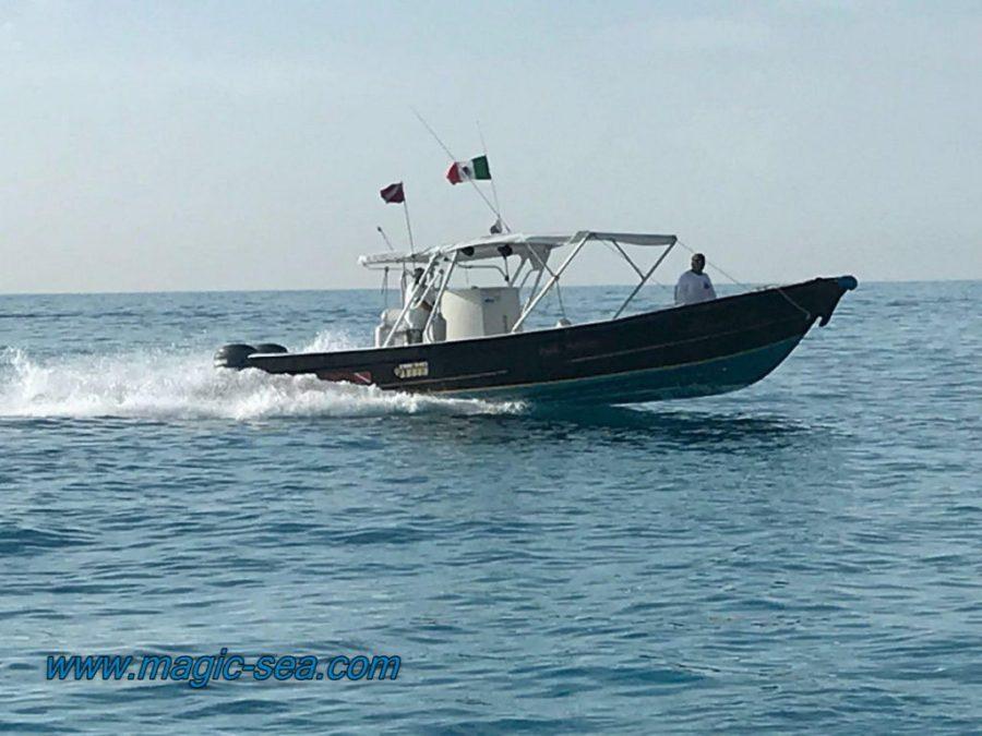 snorkel-turtles boat