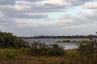 Looking across the pond on Booby Cay