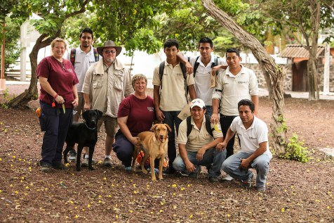 Island conservation science dogs for conservation galapagos santa cruz island