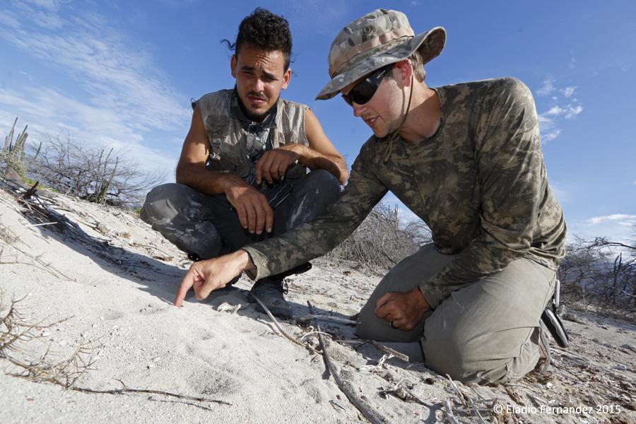 Eladio-fernandez-island-conservation-photographer-riccords-iguana-cabritos-island-wes-jolley
