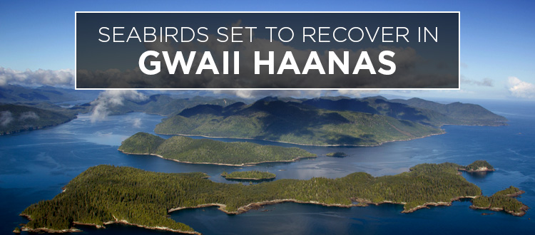 Island-conservation-gwaii-haanas-canada-british-columbia-featured-2