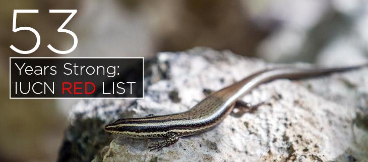 island conservation iucn red list