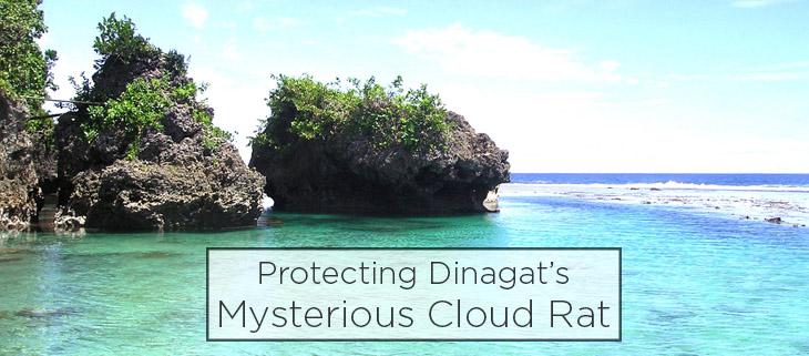 island conservation preventing extinctions philippines dinagat cloud rat