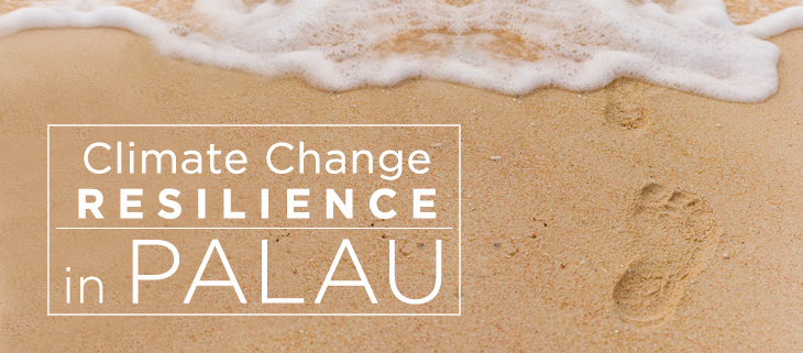 island-conservation-preventing-extinctions-palau-climate-change-resilience-feat