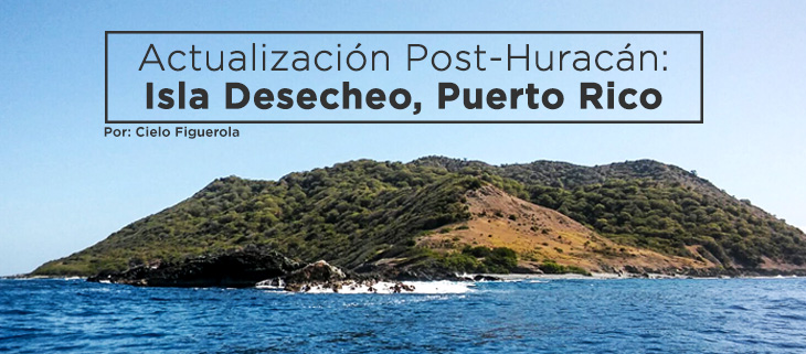 island-conservation-desecheo-island-hurricane-recovery-spanish-feat