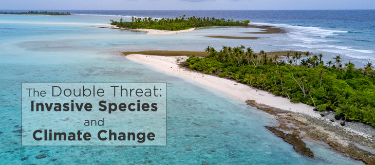 island-conservation-invasive-species-climate-change-feat