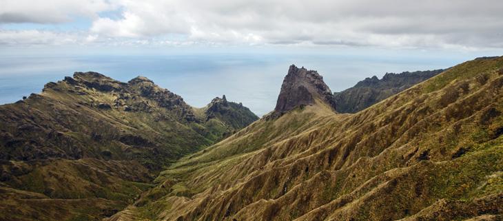 island-conservation-invasive-species-preventing-extinctions-Gough-Island-feat
