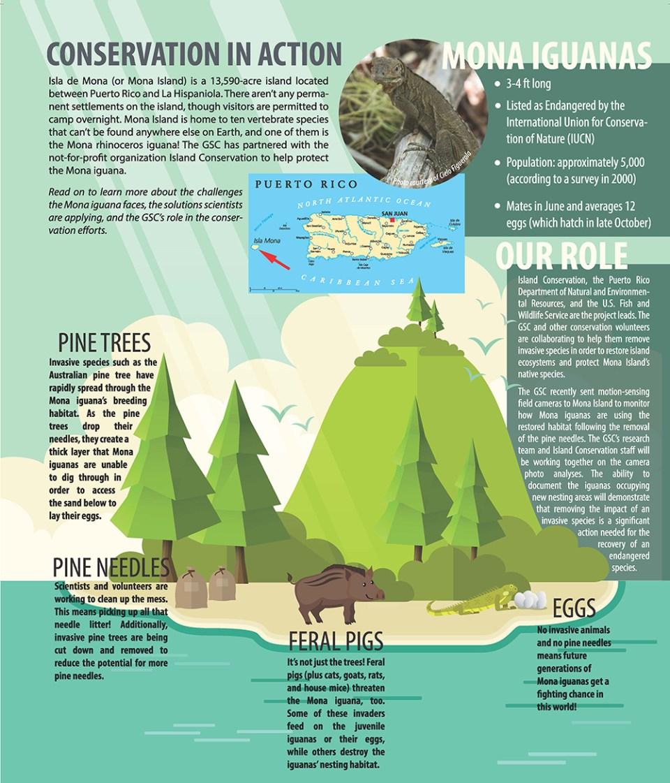 island-conservation-invasive-species-preventing-extinctions-mona-island-greensboro-science-center-infographic