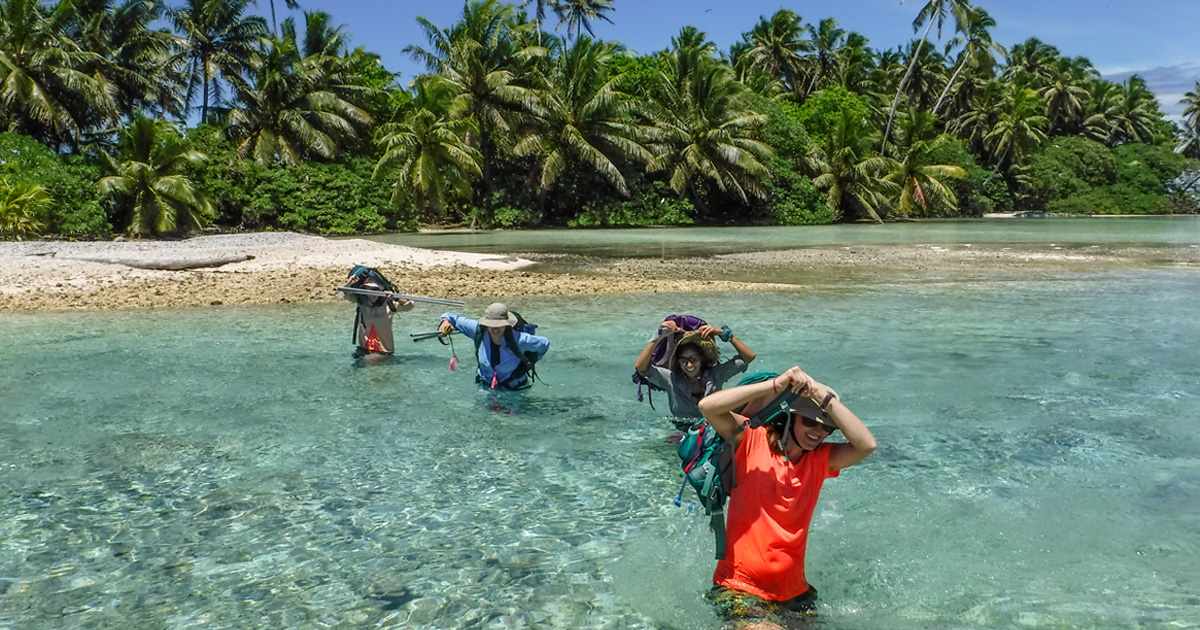 island-conservation-invasive-species-preventing-extinctions-palmyra-atoll-research-discoveries-conservation-2018