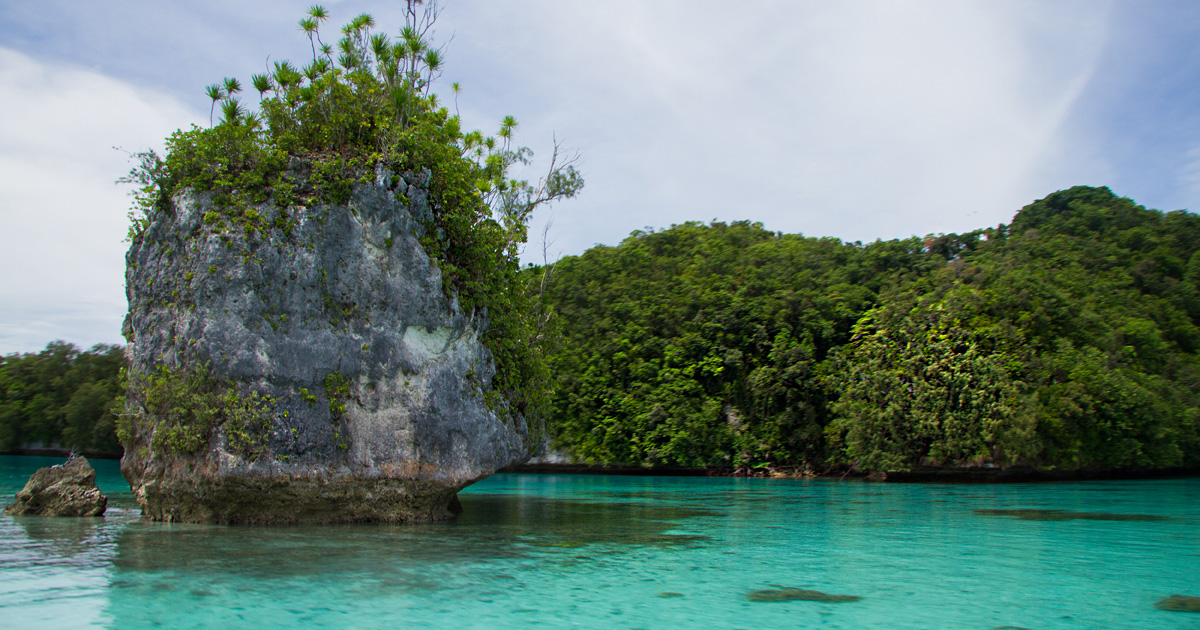 island-conservation-invasive-species-preventing-extinctions-Palau-rock-islands-ngeanges
