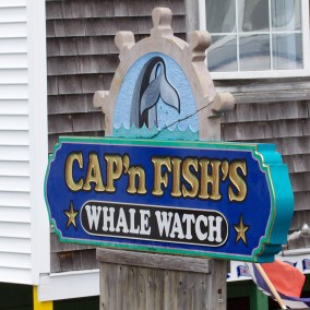 boothbay harbor  078