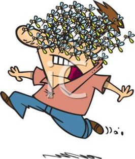 0511-1007-2118-0632_Cartoon_of_a_Man_Running_and_Screaming_with_a_Swarm_of_Mosquitoes_on_His_Face_clipart_image