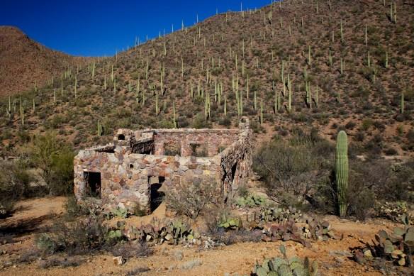 Tucson  033