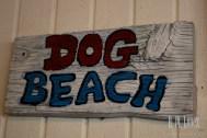 San Diego Beaches  007