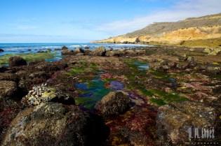 San Diego Beaches  018