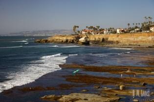 San Diego Beaches  058