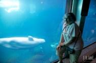Sea World 086
