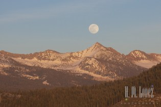 Full moon  018